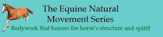 Equine Natural Movement Banner
